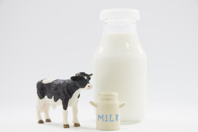 妊娠中は牛乳やヨーグルトなどの乳製品を食べても大丈夫?