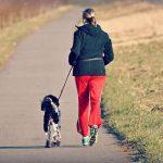 妊娠中につわりで犬の散歩に行けないときの対処法