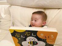 0~2歳児向け絵本「ぶんぶんきいろ(いっしょにあそぼ)」の感想