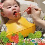 離乳食でイチゴを食べさせる時期は?種はどう処理する?