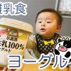 赤ちゃんがヨーグルトを食べられる時期と安心なヨーグルト選びの基本